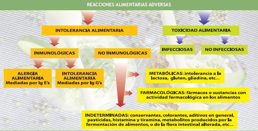 explicación y detección de intolerancias alimentarias | euroespes